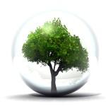 """Il nostro no motivato al """"Protocollo Gestione Rumori Ambientali"""" By Eddi Dolcetti"""